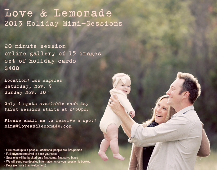 2013 HOLIDAY MINI-SESSIONS!