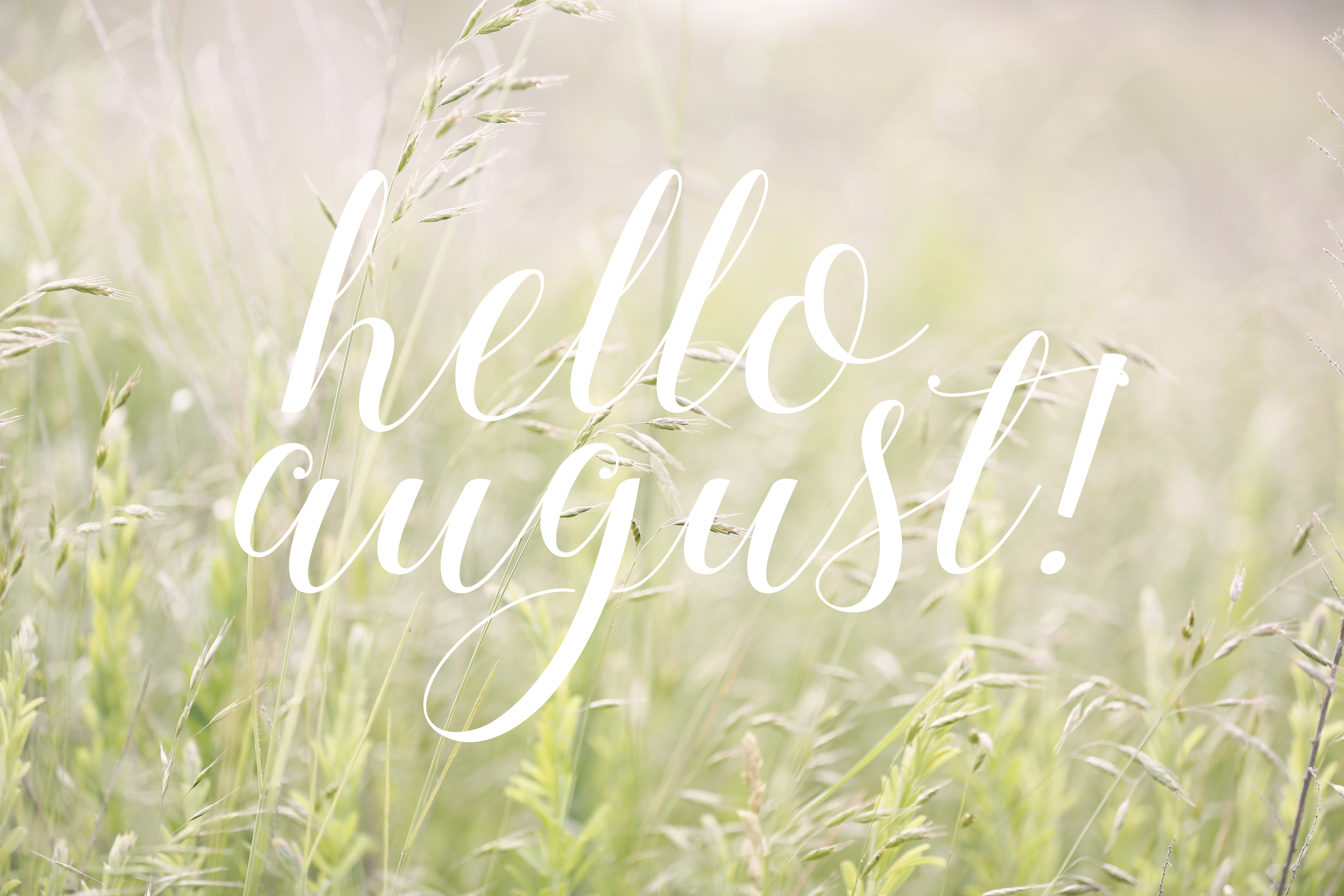 hello august, love and lemonade, northern virginia, nina lance, august goals